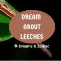 dream about leeches