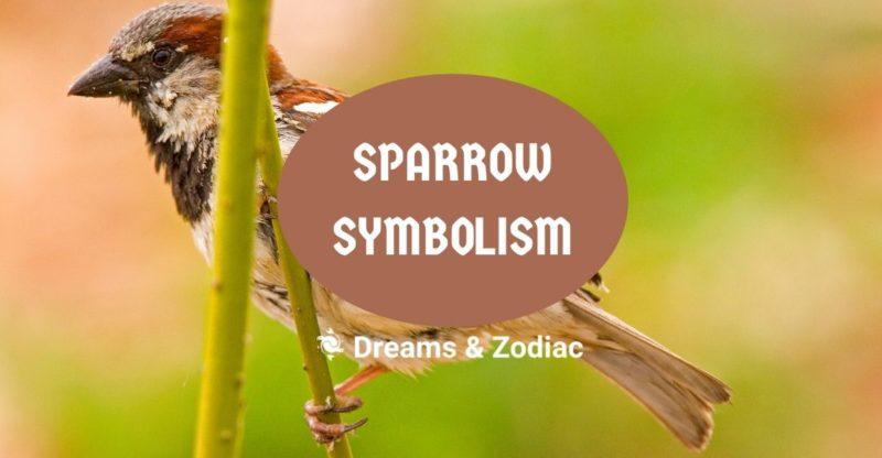 sparrow symbolism