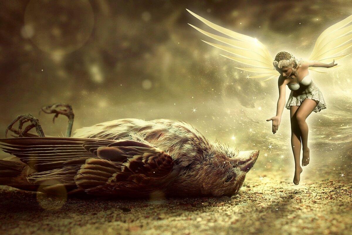 What does a dead sparrow symbolize