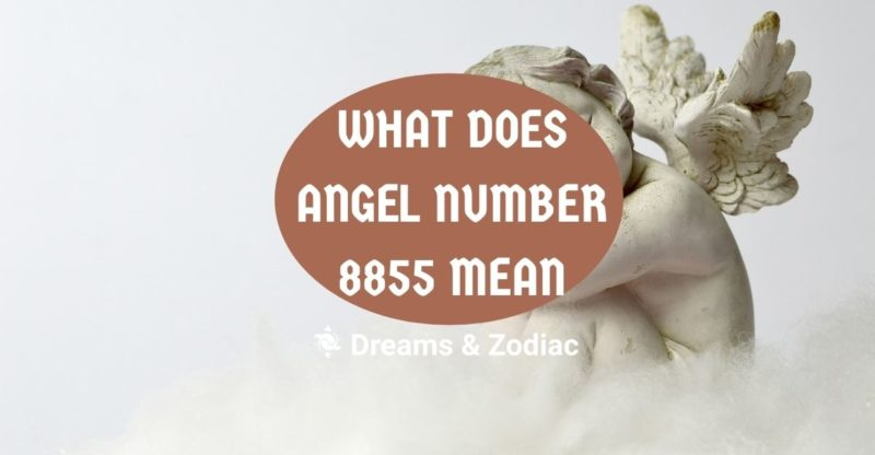 what does angel number 8855 mean