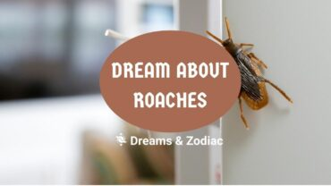 dream about roaches