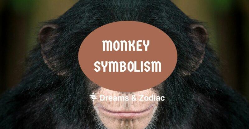 monkey symbolism