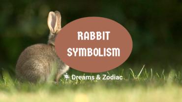 rabbit symbolism