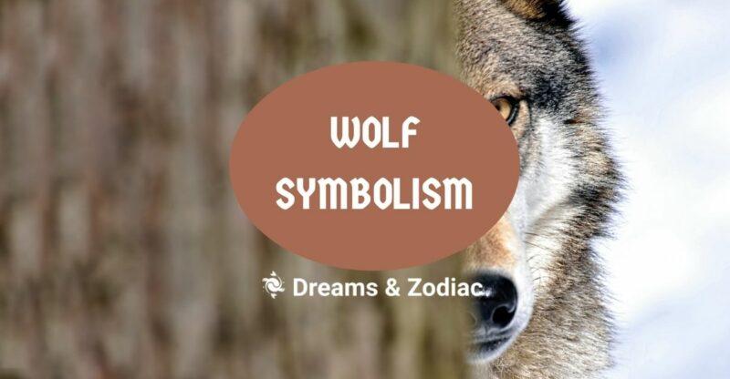 wolf symbolism
